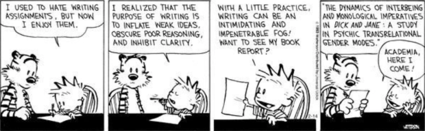 Calvin and Hobbs Academia